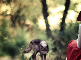 Red Riding Hood Photo hd Wallpaper